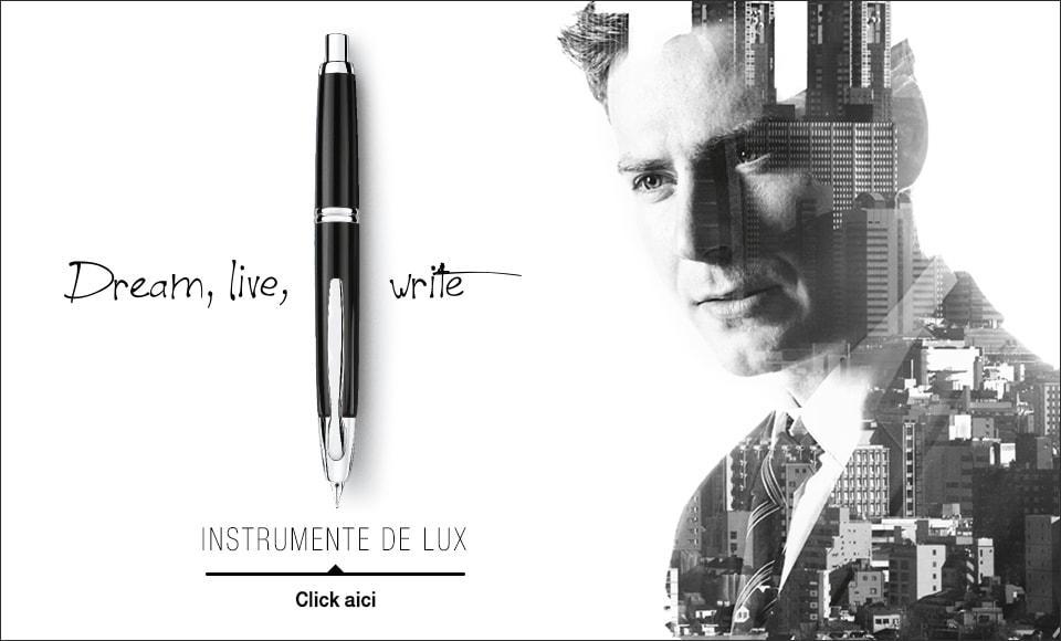 Instrumente de lux Pilot